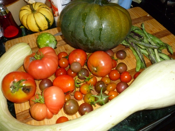 Squash, tomatoes, beans